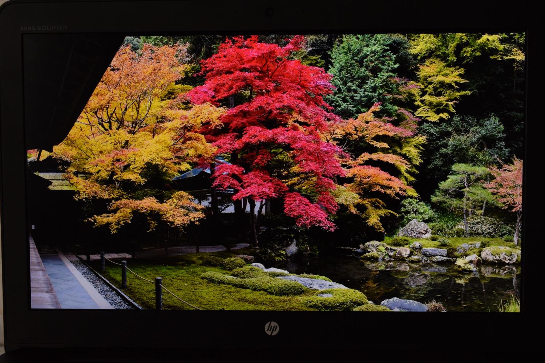 HP ZBook 15 G4 - pohľad na displej (park)